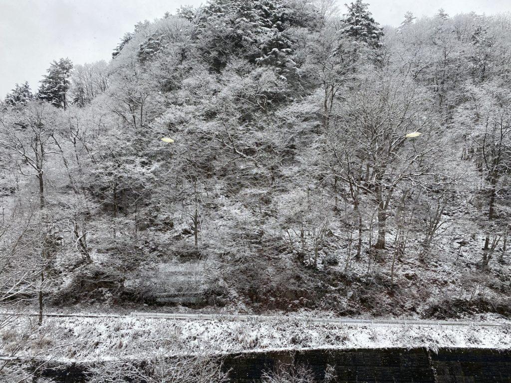 20/12/14冬景色02